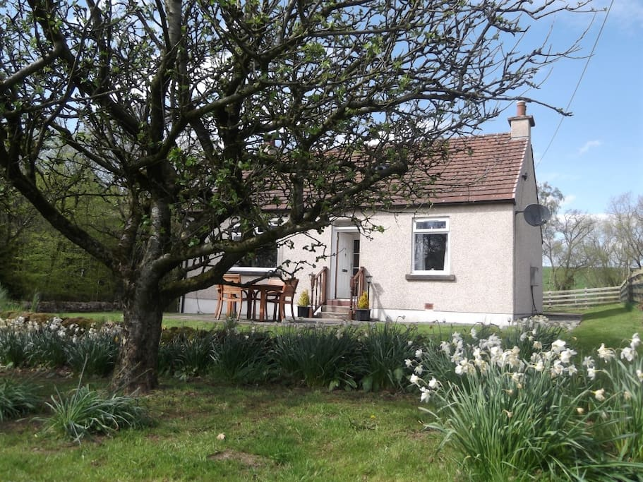 Lovely cottage with large enclosed garden