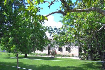 gîte dans la nature, grand calme et pêche - Porchères - Nature lodge