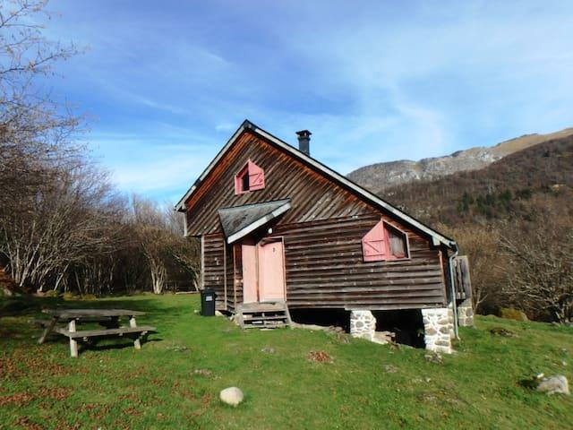 Chalet de la forêt d'Issaux n°3 : le montagnard