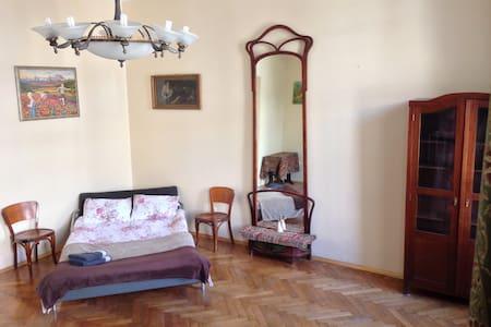 Former artist's, private room, shared bath, wi-fi - ลวีฟ