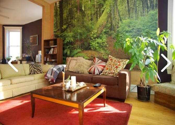 Palmer Treehouse or Oasis - entire apartment