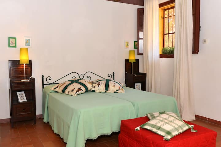Cane - 5 beds apartment Tuscan countryside