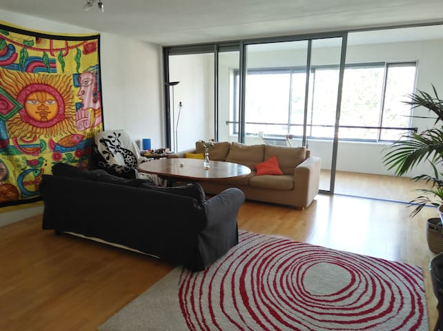 Huge flat in central location
