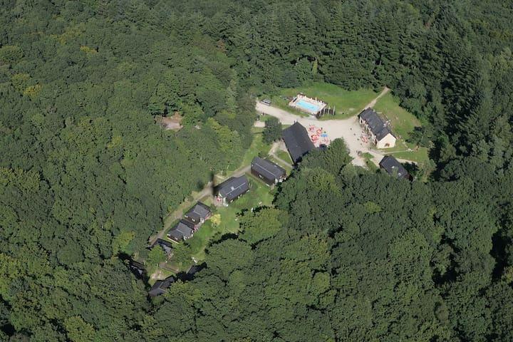 Des chalets au cœur d'une forêt à découvrir - Hambers - Doğa içinde pansiyon