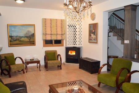 Stylish Holiday Villa, near sea - George Houses - Pentakomo