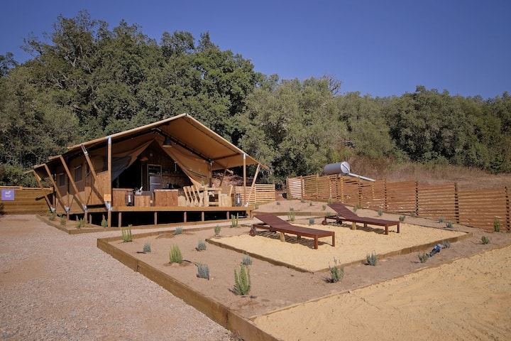Safari Cabin planted in the midst of nature