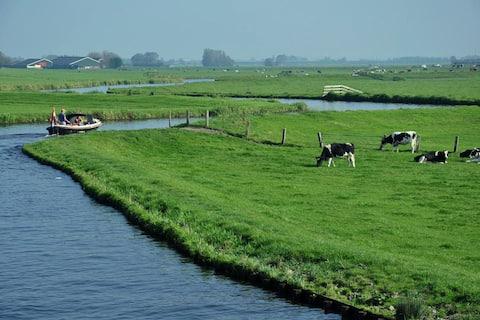 オランダのホットスポットの真ん中に小さな納屋