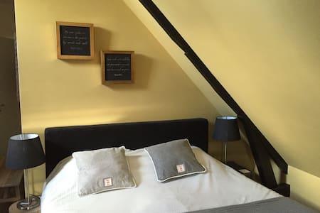 Mooi appartement met dakterras, hartje centrum! - Leeuwarden - Apartamento