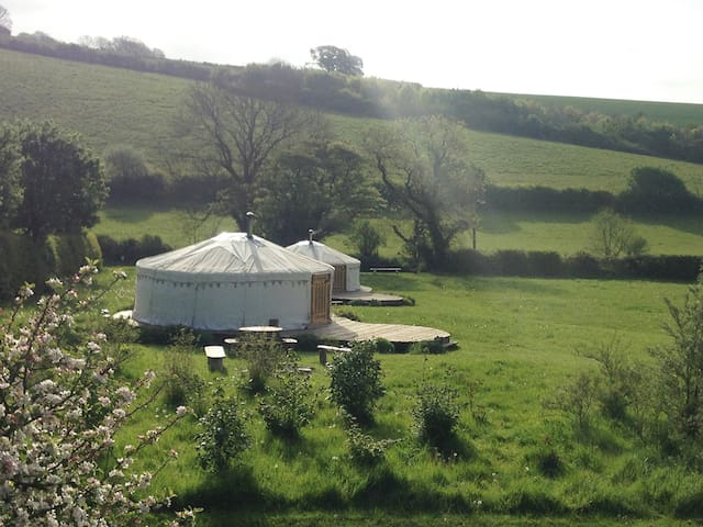 Green Valley Yurts - Medium Yurt