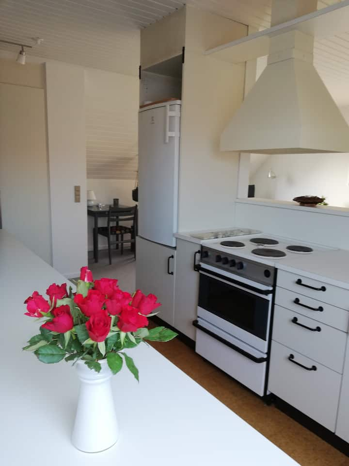 Lovely working appartment close to Aarhus
