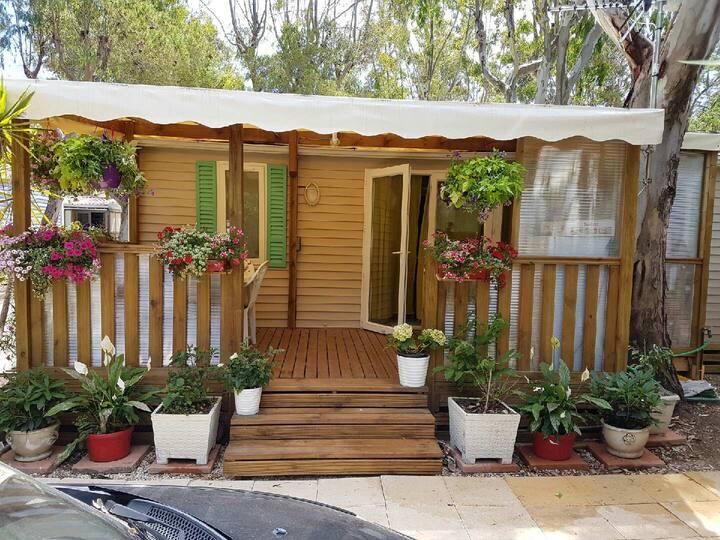 location saisonnière  bungalow camping 5 etoiles