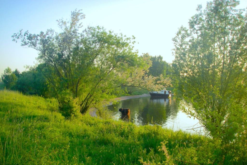 Heerlijk genieten in de omliggende natuur