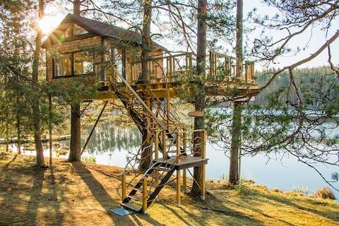 Treehouse Cone bij het meer.