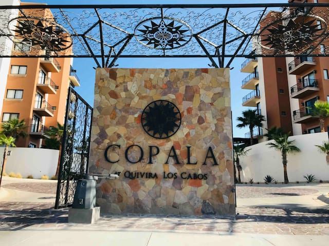 Private and secure entrance to Copala. You must have all guest on the list to enter