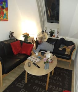 Lejlighed midt i Roskilde med brændeovn - Roskilde - Wohnung