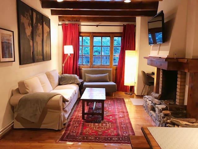Cozy luxurious apartment in La Pleta del Tarter