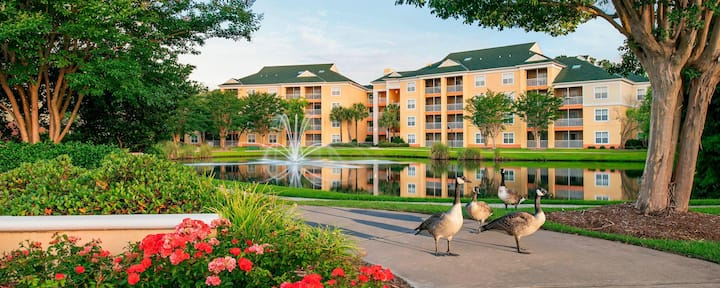 1 Bedroom Villa @ the Sheraton Broadway Plantation