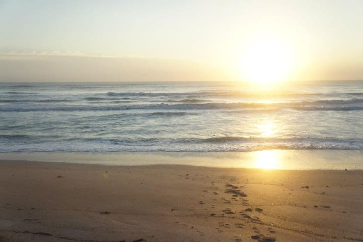 Oceanfront paradise condo - New Smyrna Beach - Condominio