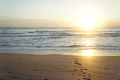 Oceanfront paradise condo