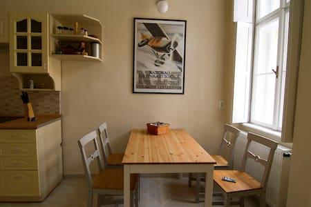 Cosy home next to Gellért bath - Appartement