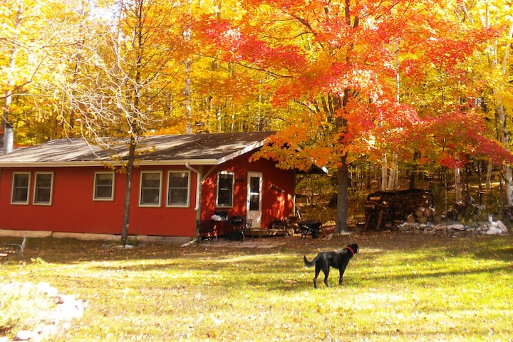 Private Fish Creek cottage in the woods.