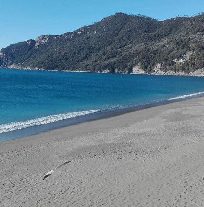 spiaggia di Riva