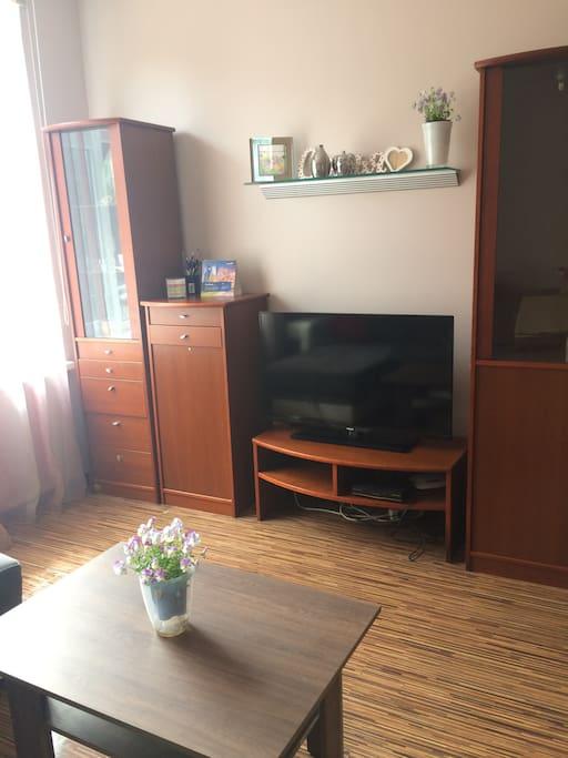 Большая комната с угловым диваном  и телевизором