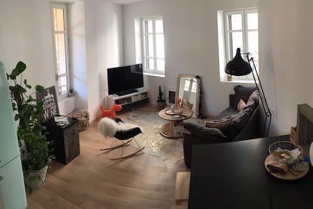 Appartement hyper-centre d'Albi
