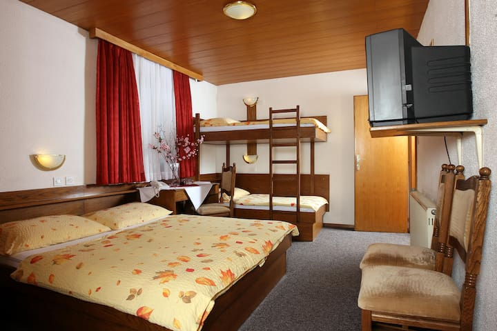 Private quad room*** 1 . , free parking, free wifi - Medvode
