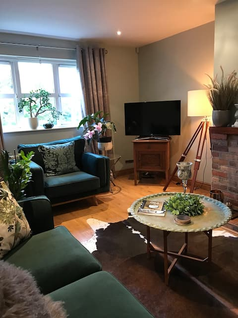 Two comfy rooms in east Belfast