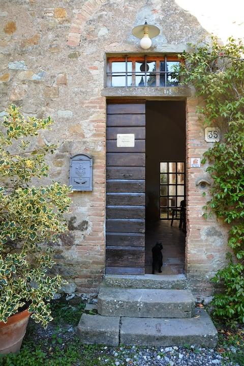 A few steps from Volterra, La Rosa Apartment
