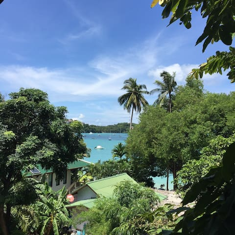 Phuket Oasis By The Sea 2