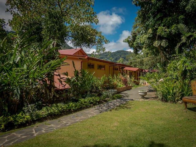 Standard Room Rio Chirripo Lodge - Canaan de Rivas - Bed & Breakfast