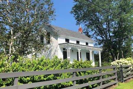 The Stuyvesant House