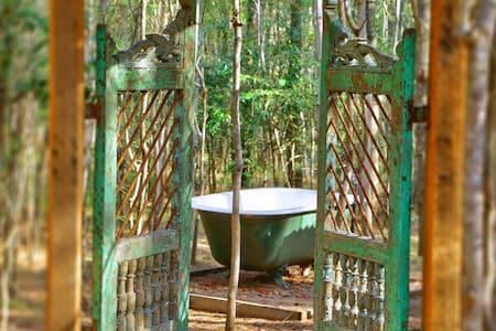 Romantic Getaway- Treetops Cottage - Pokolbin