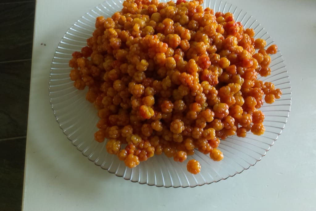 Cloudberries from the woods