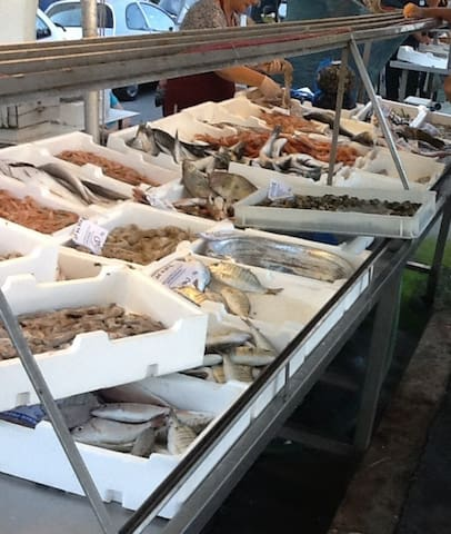 Arrivo dei pescherecci e mercato del pesce.