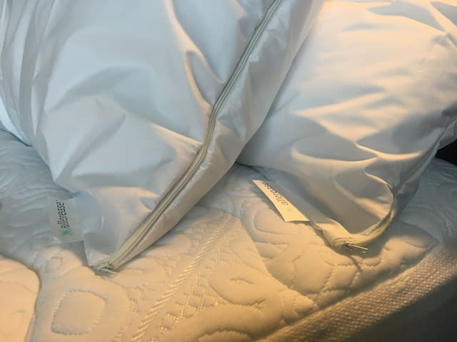 We also protect all of our mattresses and pillows with soft, antimicrobial, anti-allergen, water resistant zippered covers beneath the linens!