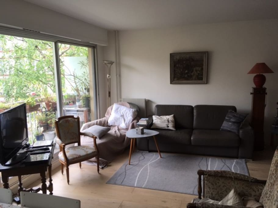 séjour, avec la télévision et un canapé (deux couchages)