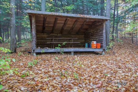 Log Cabin Forest Lean-To - Freeville