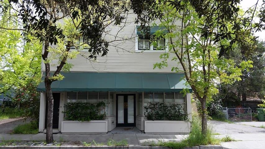 Spacious Cozy Apartment - Santa Rosa - Lägenhet