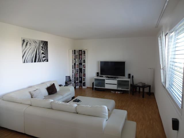 Private room and free usage of 145m2 big apartment - Zürich - Flat