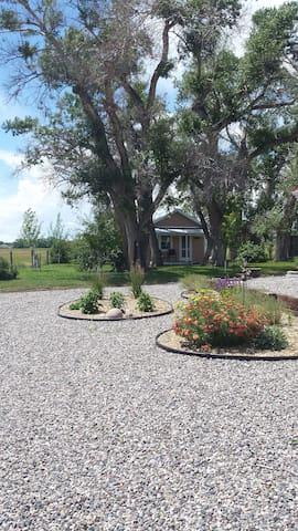 Doyle Family Farm