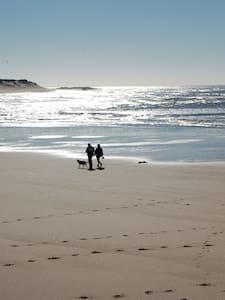 Ofirina - paix et tranquilité - Fão - Pensió
