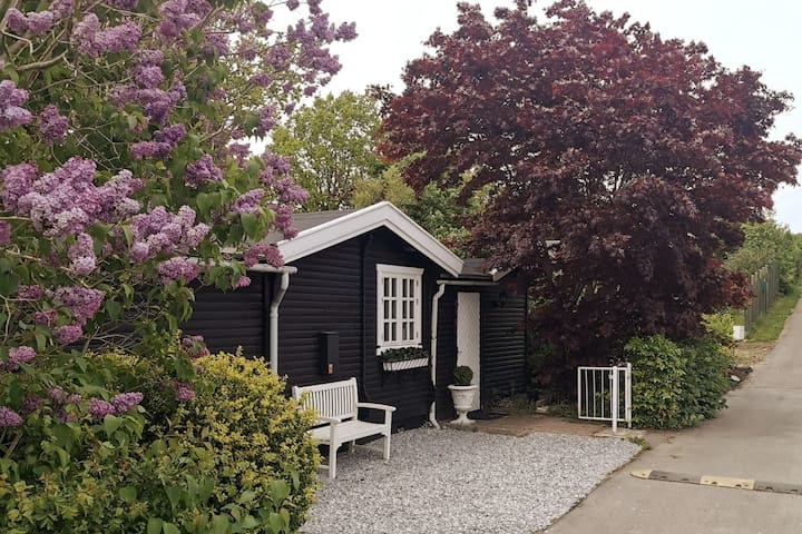 Beautiful cosy cottage near the sea and forrest.