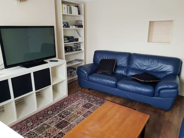 Amazing apartment close to central and Shorditch