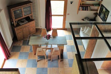"""""""La casa dell'asino"""" modern vineyard villa - Montagna In Valtellina - Haus"""