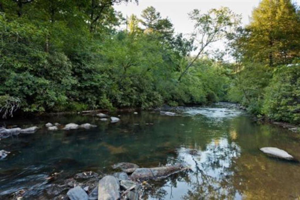 Gorgeous shot of the Ellijay River