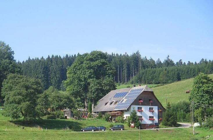 Ferienhof Gerda - Ferienwohnung Talblick