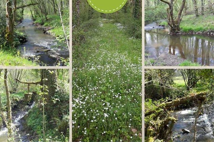 Le Moulin de la Forge : loft entre bois et rivière